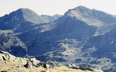 Păpușa 2504 m